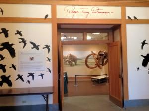 bird silhouettes on wall in RTPI - Jamestown NY