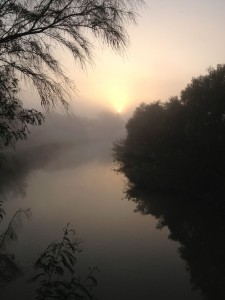 sunrise at Bentsen Rio Grande SP - near McAllen TX - 2012-12-06