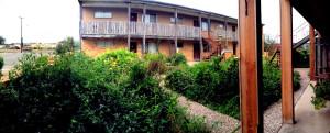 Butterfly garden between apartment suite buildings - Alamo Inn - Alamo TX - December 2012