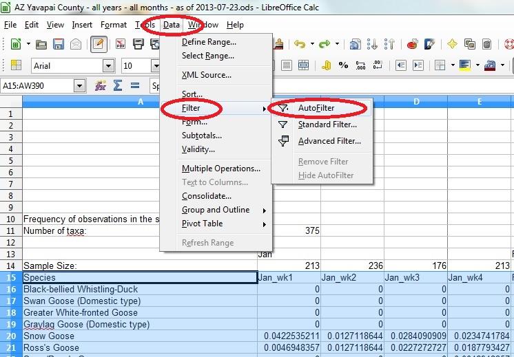 04 spreadsheet set up auto filter