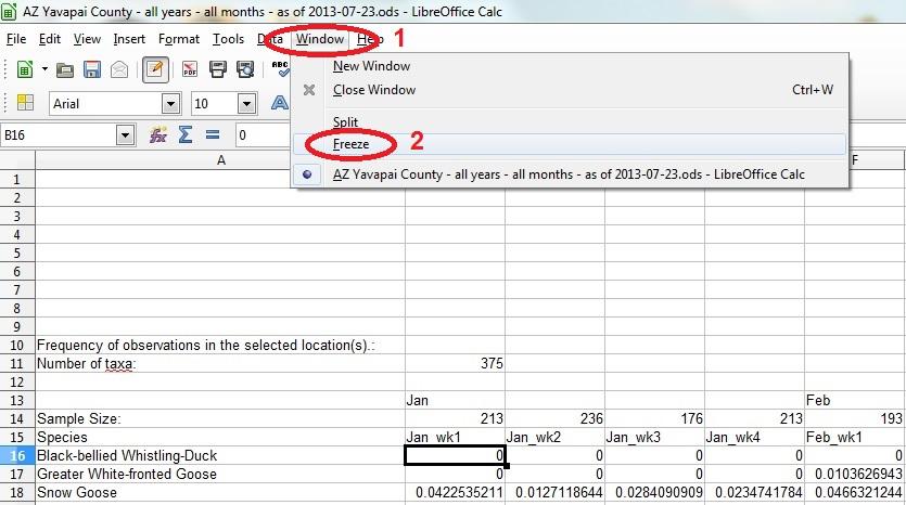 21 spreadsheet freeze panes