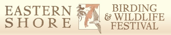 Eastern Shore Birding and Wildlife Festival