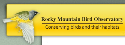 Rocky Mountain Bird Observatory